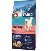 Для собак крупных пород с 7 видами рыбы и рисом Adult Large Fish & Rice