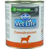 Vet Life консервы для собак конвалесценсе (паштет)