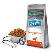 VL диета корм для собак Convalescence