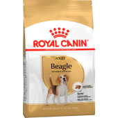 Для взрослого Бигля (Beagle Adult)