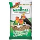 Зерновая смесь для средних попугаев