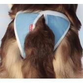 Трусы для собак многоразовые ABSORB, размер L