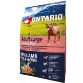 Для собак крупных пород с ягненком, индейкой и рисом Adult Large Lamb, Turkey & Rice